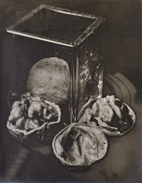 man-ray-untitled-(solarised-walnuts)